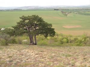 Výhled z Otmíčské hory