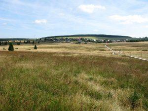 Božídarské rašeliniště, srpen 2012