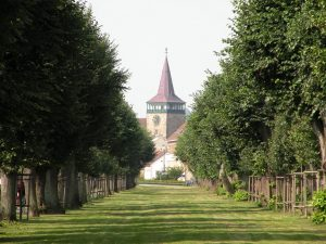 Valdštejnova lipová alej, červenec 2016