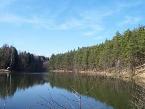 rybník Strženka, březen 2007