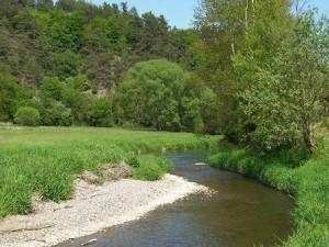 Ostrůvek v řece Střele pod Dolním Hradištěm, 2005